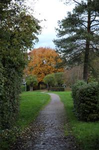 Der Fuß- und Fahrradweg im Herbst 2014 in Sandweier